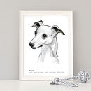 Personalised Whippet Art Print