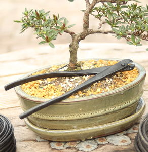 Wire Cutter Bonsai Tree Tool