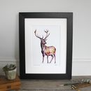 Stag Antlers At Dusk Giclee Fine Art Print