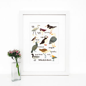 'British Seabirds' Illustrated Giclée Wall Art Print - posters & prints