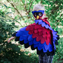 Superhero Bird Mask And Wing Cape Children's Costume