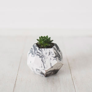 Geometric Marbled Planter With Succulent