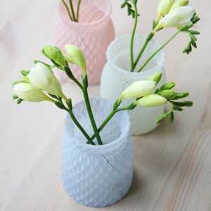 Frosted Small Vase - home accessories