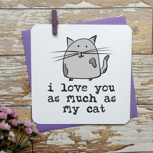 ' I Love You As Much As My Cat/Cats' Anniversary Card - anniversary cards