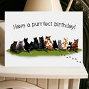 Cat Card Purrfect Birthday A5