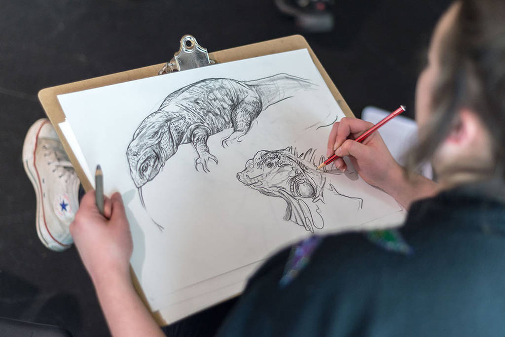 Wild Life Drawing Experience For One