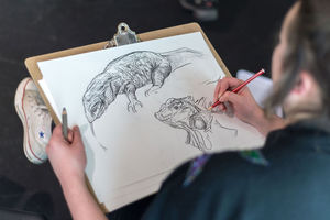Wild Life Drawing Experience For One - gifts for him