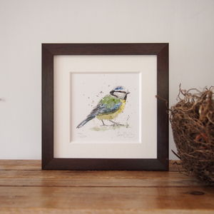 Limited Edition, Garden Bird Print, Blue Tit