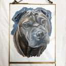 Dog Portrait | Pet Portrait | Gift For Dog Owners