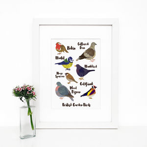 'British Garden Birds' Giclée Wall Art Print - animals & wildlife