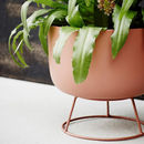 Round Blush Pink Or Grey Metal Planter With Stand
