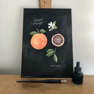 Botanical Blood Orange A4 Giclée Print