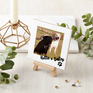 Personalised Ceramic Pet Photo And Mini Easel
