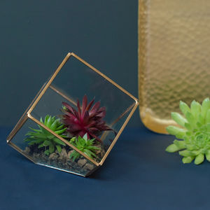 Brass Cube Terrarium - home accessories
