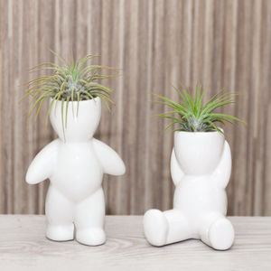 Ceramic Figure Plant Holder With Plant