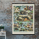 Children's Cotton Reptiles Print In French