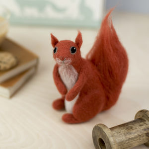 Red Squirrel Needle Felting Craft Kit
