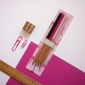 Flamingo Themed Pencil Set