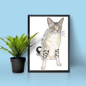 Personalised Cat Full Portrait