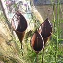Set Of Three Rusted Lily Sculptures