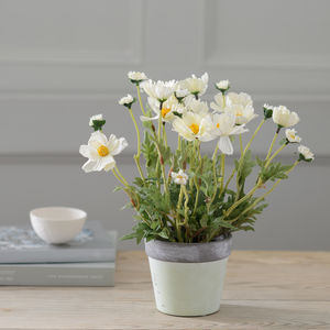 Little Artificial Potted Cosmos Plant - artificial flowers