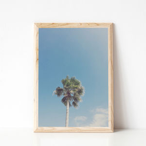 Lone Palm Tropical Photographic Print
