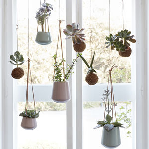 Set Of Two Hanging Ceramic Planters With Leather Straps - gifts for her