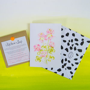 Clover Greetings Card With Wildflower Seeds