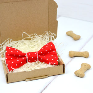 Red Polka Dot Pet Bow Tie - clothes