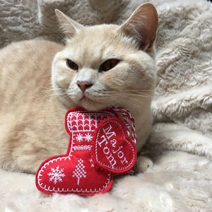 Catnip Toy Stocking, Cat Toys - cats