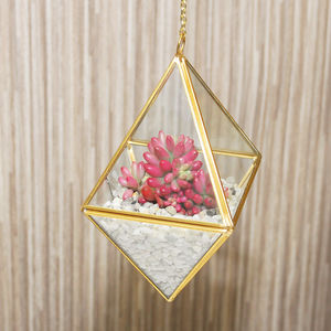 Hanging Copper Vase Terrarium