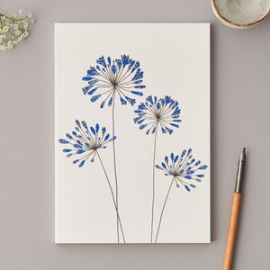 Large A5 Agapanthus Notebook - whats new