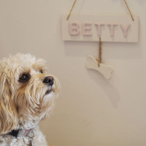 Personalised Pet Name Sign Door Plaque With Bone