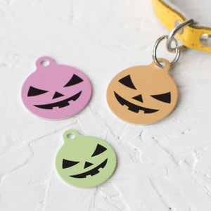 Personalised Pumpkin Pet Tag Bauble Shaped - cats