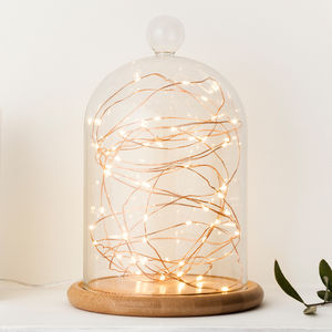 Glass Bell Jar With Copper Micro Fairy Lights