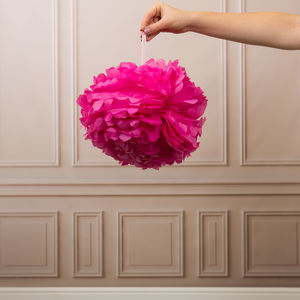 Pack Of Three Fuchsia Pom Poms