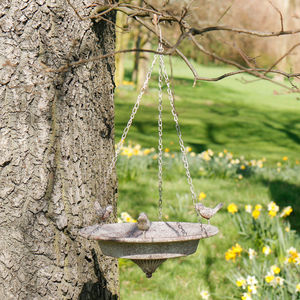 Antique Grey Hanging Bird Bath