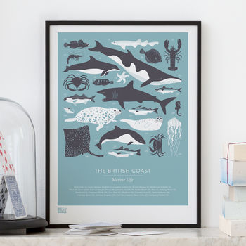 'British Coast' Marine Life Screen Print
