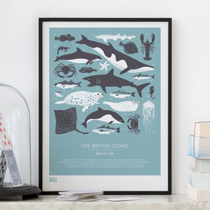 'British Coast' Marine Life Screen Print - valentine's gifts for him