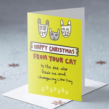 Happy Christmas From Your Cat Christmas Card