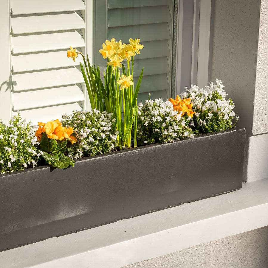Window Planters: Large Window Box Planter In Amalfi Black By Bay And Box