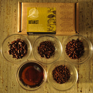 Botanist: Cacao Bean Exploration Kit - dairy free food gifts
