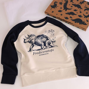 Personalised Dinosaur Kids Sweatshirt Jumper - children's jumpers