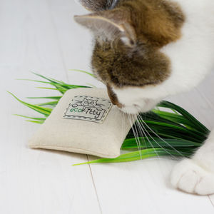 Handcrafted Organic Catnip Cushion Toy - toys
