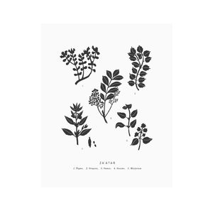 8x10 Letterpress Za'atar Art Print - food & drink prints