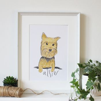 Personalised Pet Illustration Portrait