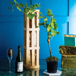 Grow Your Own Prosecco Gift Crate - personalised gifts for her