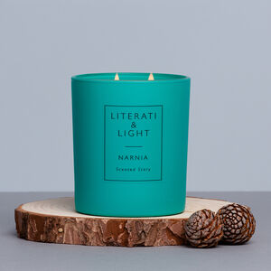 Narnia Turkish Delight, Pine, Snow Literary Soy Candle