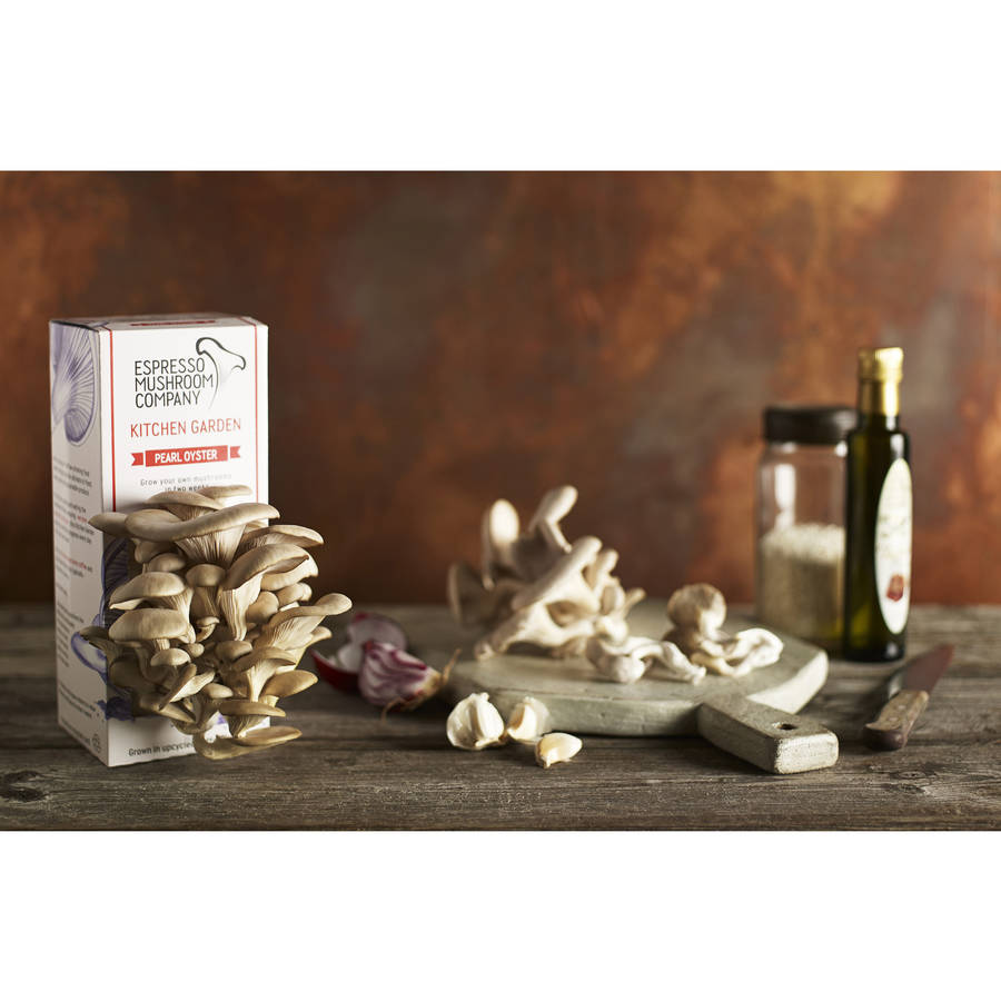 Kitchen Garden Mushrooms Kitchen Garden Mushroom Kit Seniordatingsitesfreecom