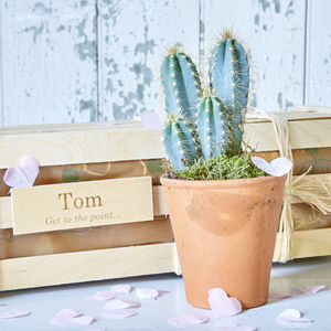 Personalised Cactus Say It With Spikes Gift - best valentine's gifts for him